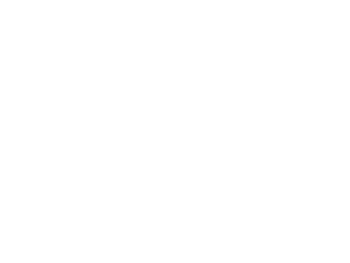 Modèles les plus populaires